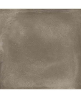 RIVERSIDE TAUPE 60T 60X60 - SQM
